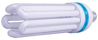 125 W Compact Fluorescent Bulb - Daylight         4000
