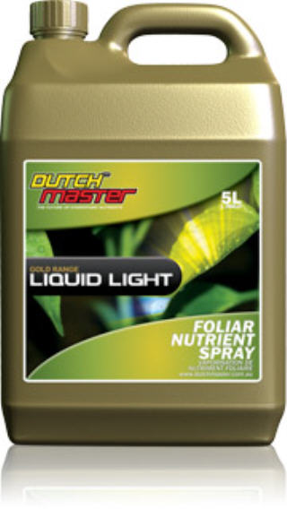DUTCH MASTER GOLD LIQUID LIGHT 719277