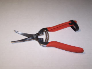 STAINLESS STEEL CURVED SERRATED HARVEST SHEAR #H302SC