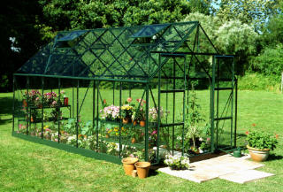 HALLS MAGNUM GLASS GREENHOUSES MG108