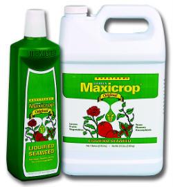 MAXICROP ORIGINAL LIQUEFIED SEAWEED 718600