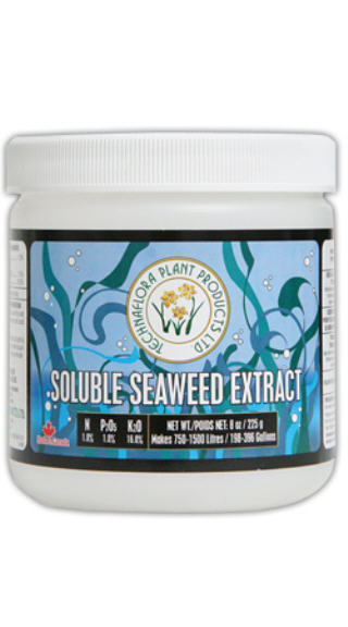 TECHNOFLORA SOLUBLE SEAWEED EXTRACT 1-1-16 720680