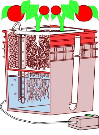 general hydroponics waterfarm instructions