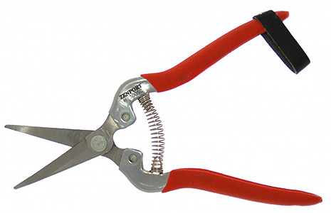 STAINLESS STEEL HARVEST FRUIT SHEAR WITH CURVED BLADE H300SC